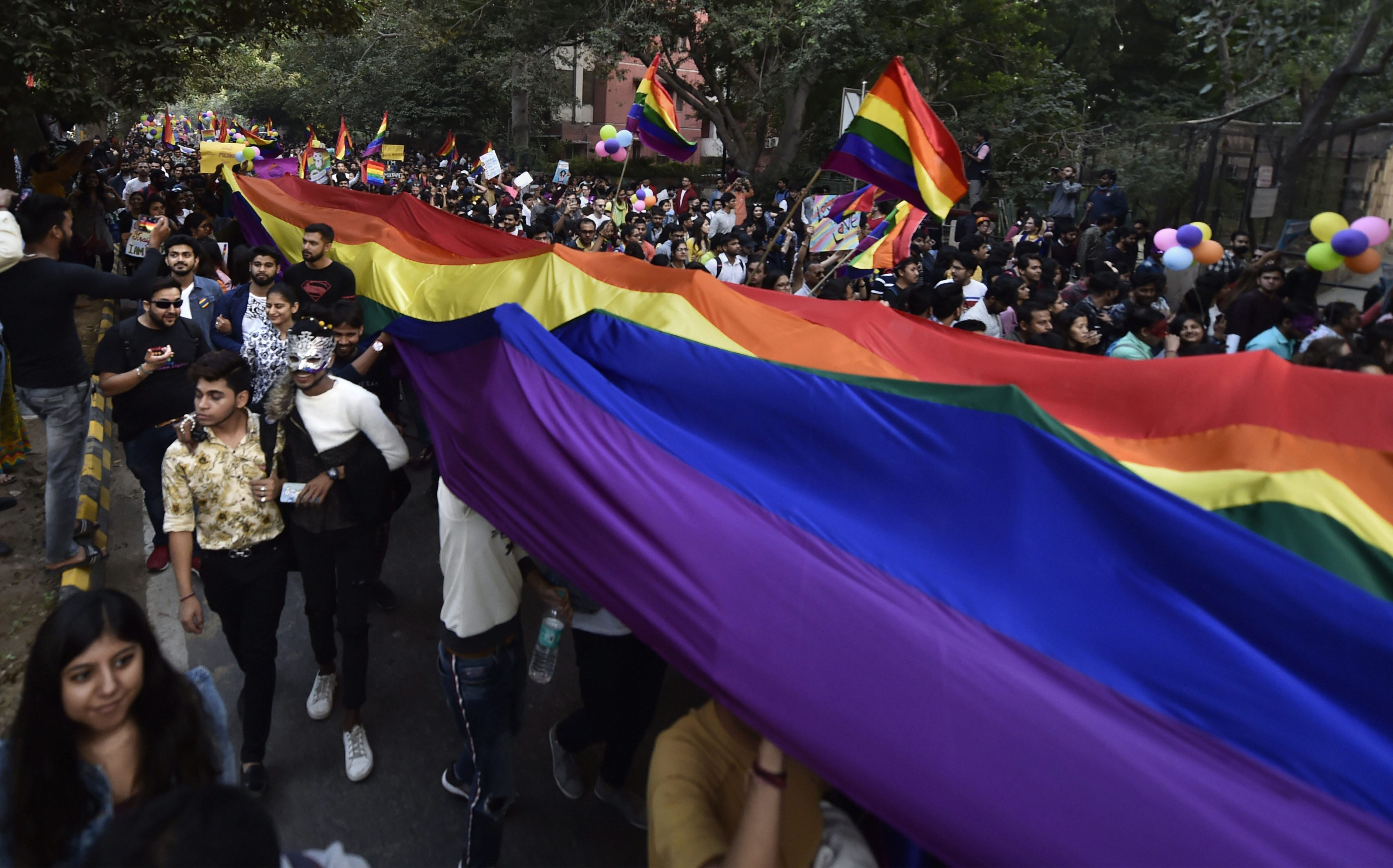 Colour me rainbow: Delhi LGBTQ+ community walks to claim their place in society