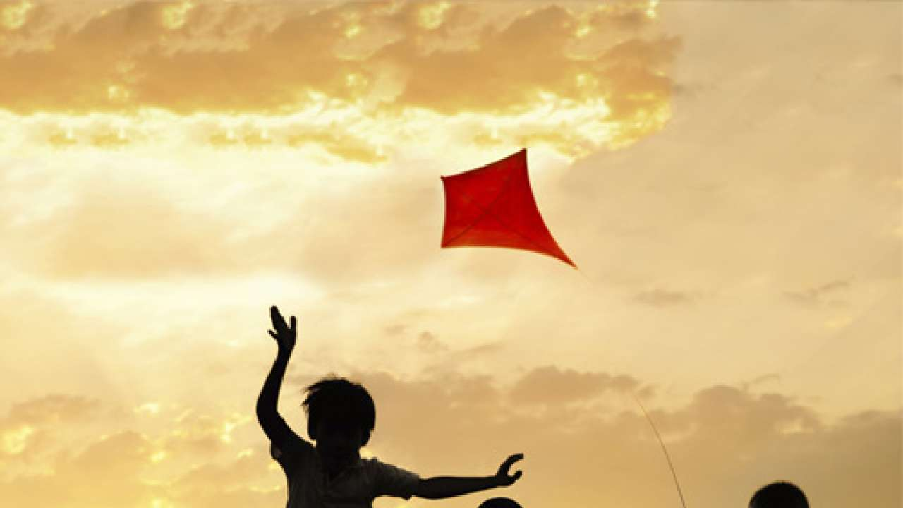 Why do we celebrate Makar Sankranti on January 14 every year?