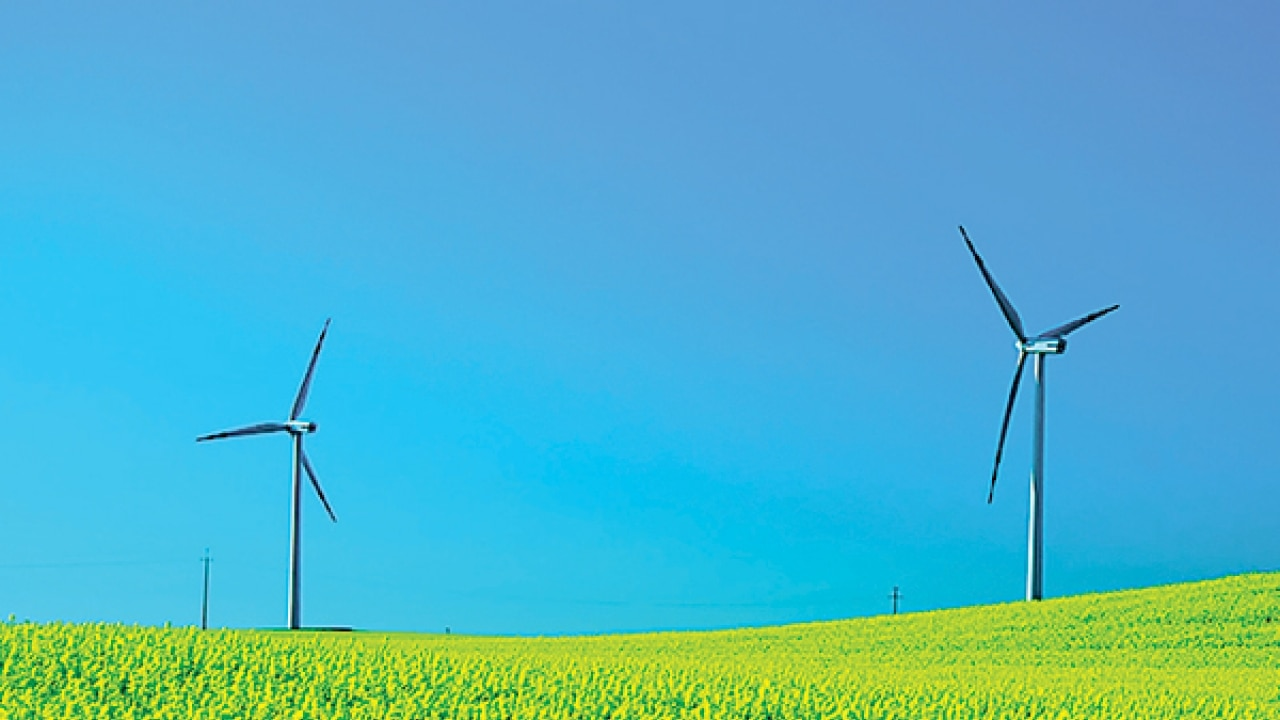 Maharashtra Government To Allow Wind Energy Project