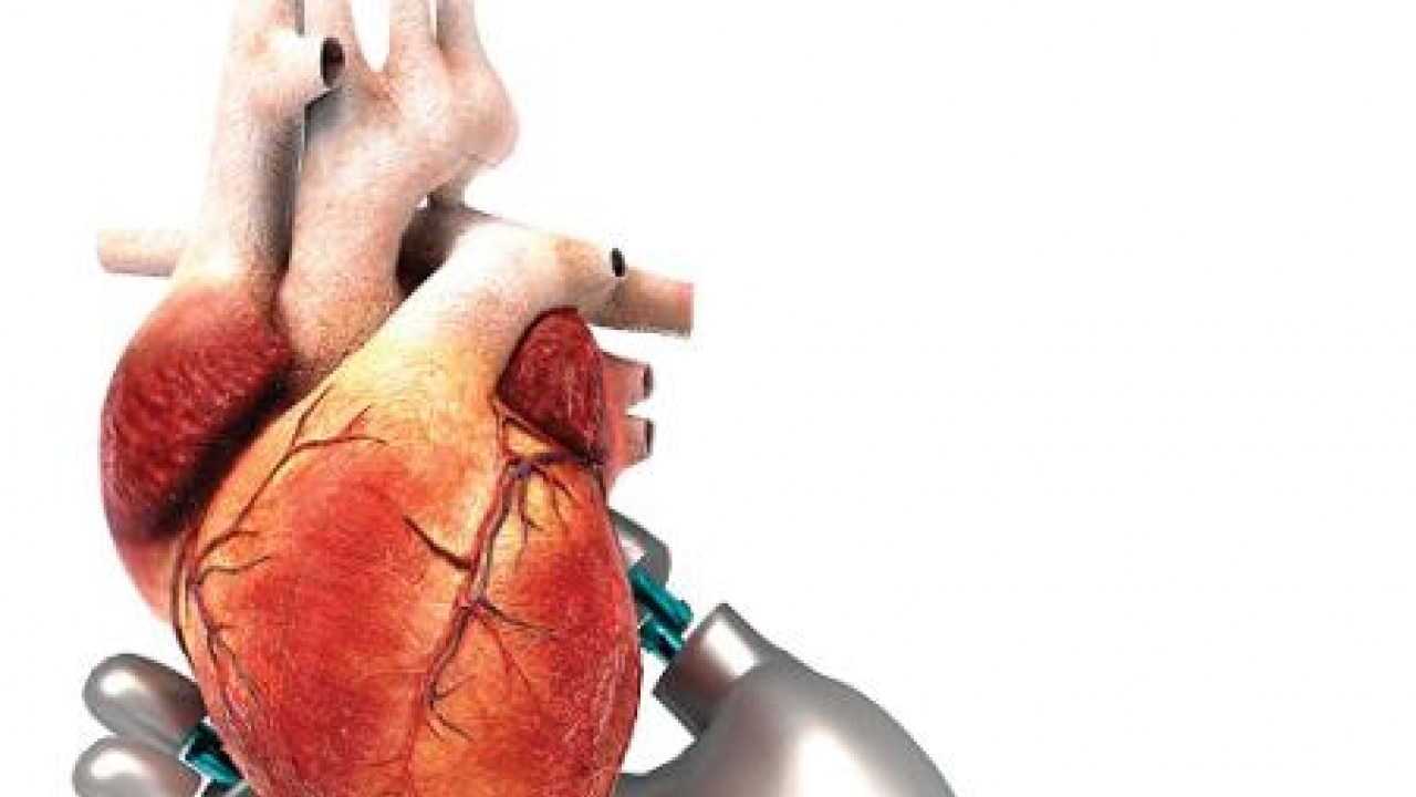 A Glimpse Into The Future Of Cardiac Surgery