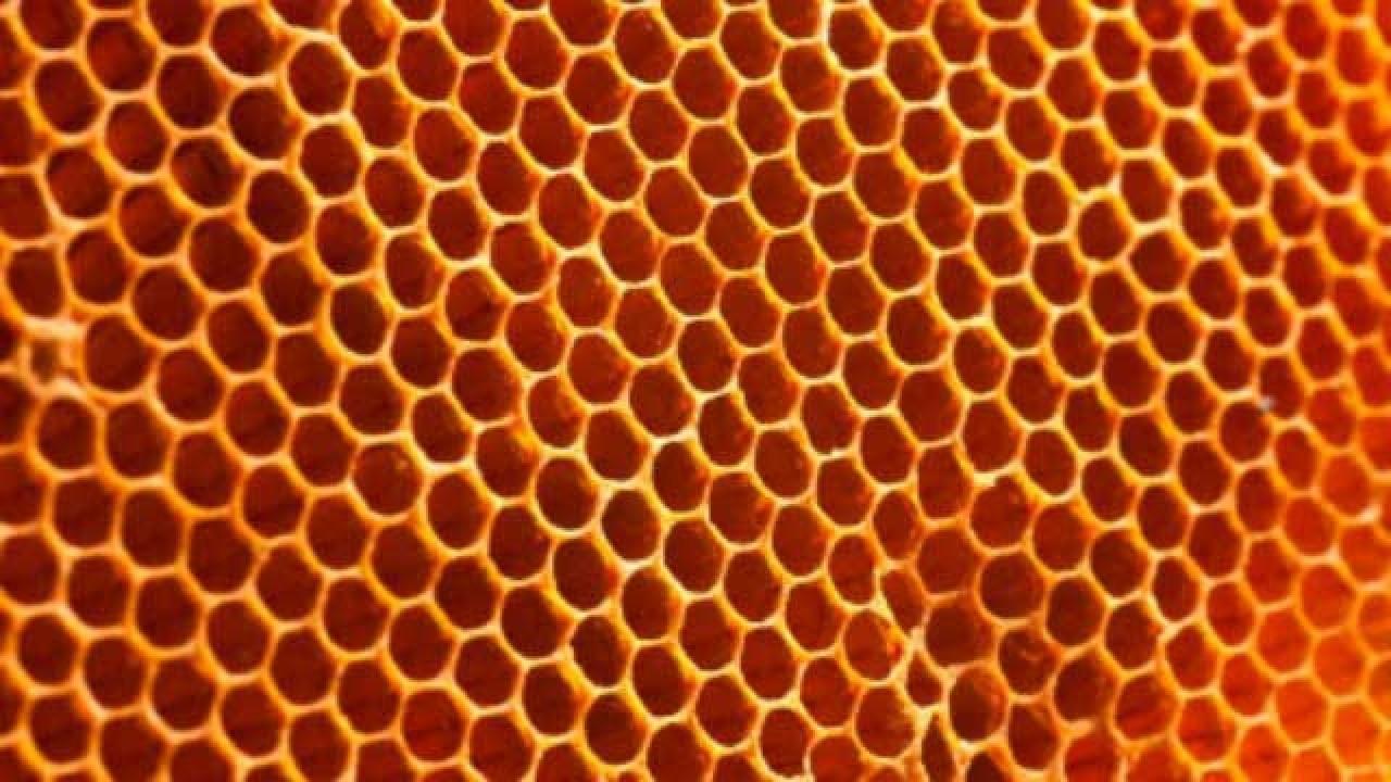 Is honey harmful