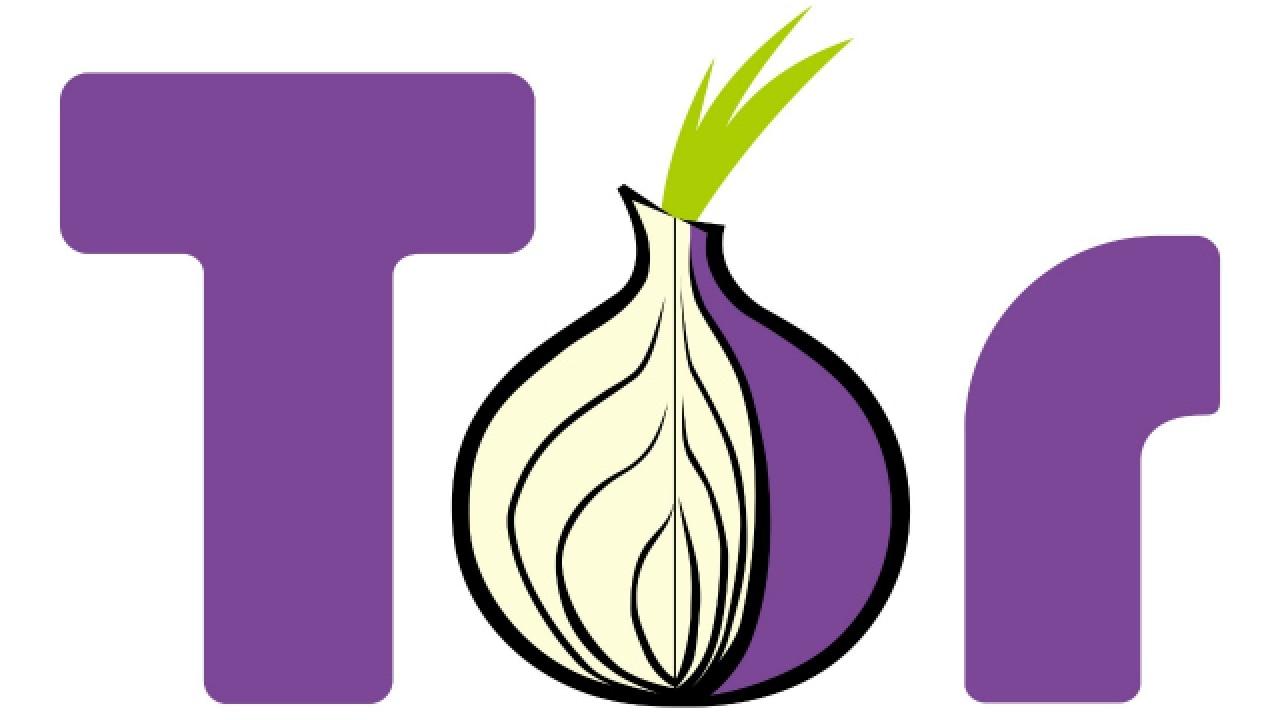 Html5 для tor browser hydra2web как настроит ip в браузере тор гидра