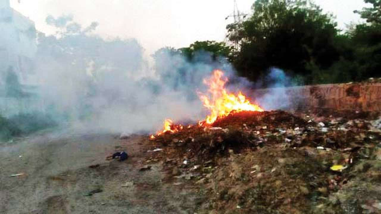 Find Ways To Stop Waste Burning Mcds Told