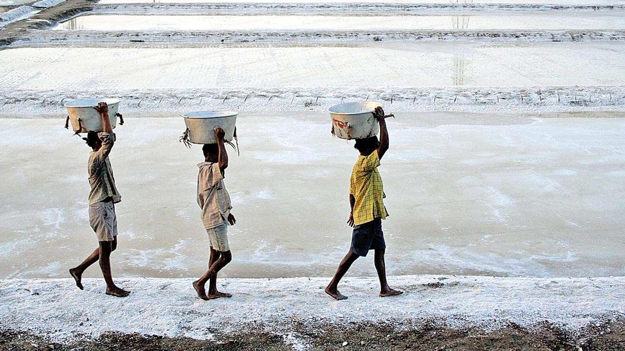 Image result for salt pans in mumbai
