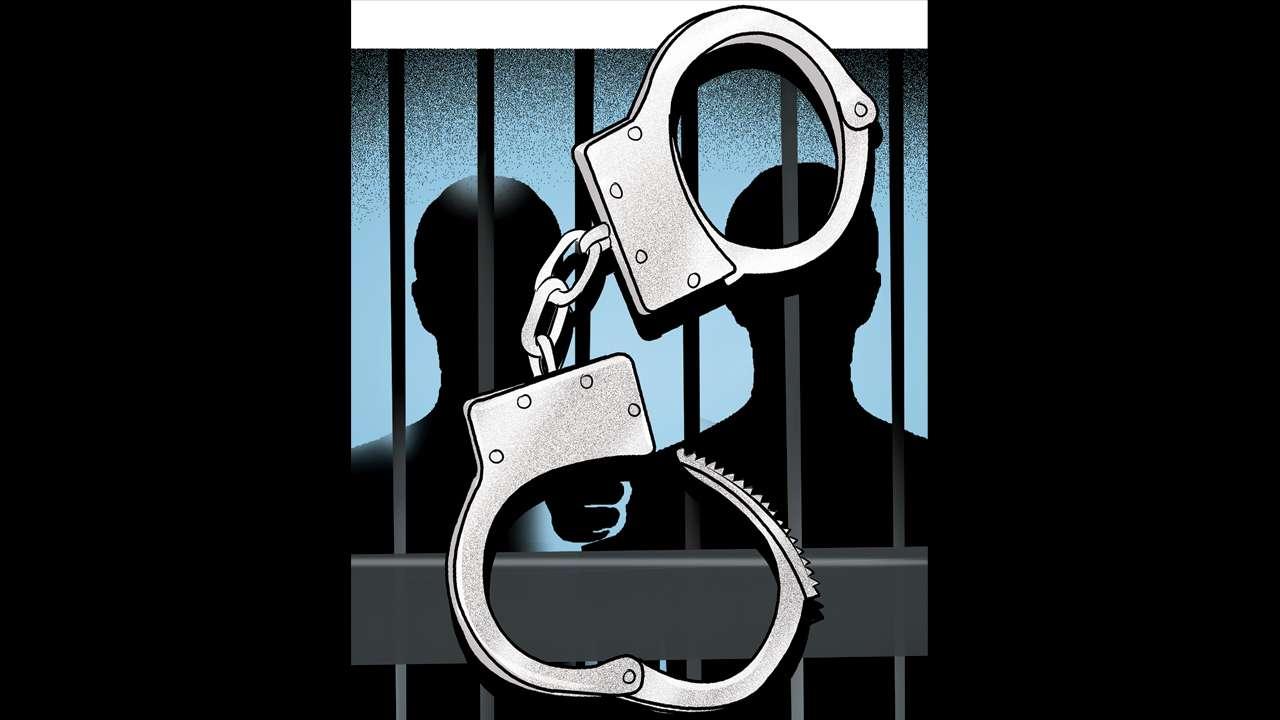 Delhi: Drug cartel busted, three held with 1 2-kg malana