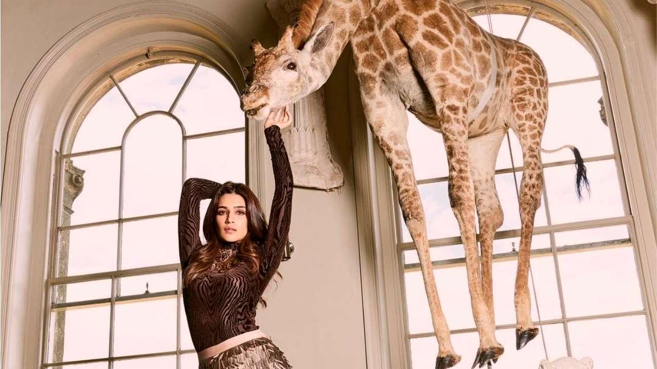 Dating Woman Giraffe.