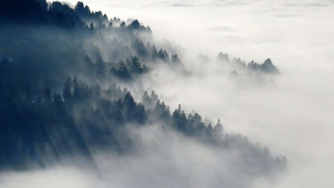 iit scientists develop material that can harvest water from fog