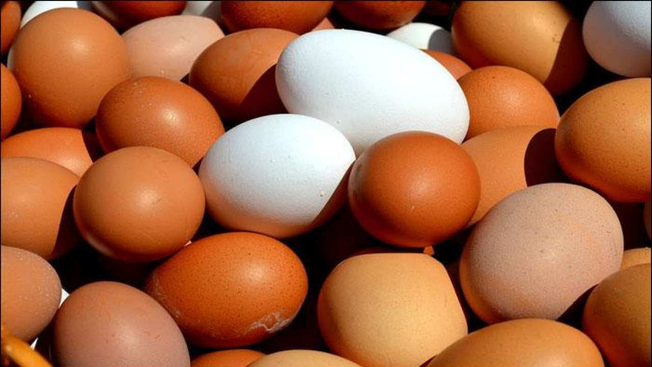 Price of eggs surge in city as demand spurts