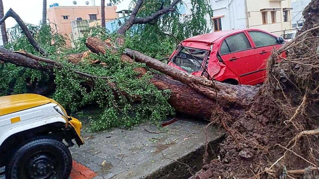 Image result for the gaja storm tamilnadu