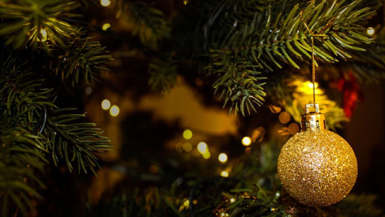 Antigua Christmas Eve Events 2021 Parties Christmas 2018 Best Quotes Wishes Facebook And Whatsapp Status To Greet Your Loved Ones