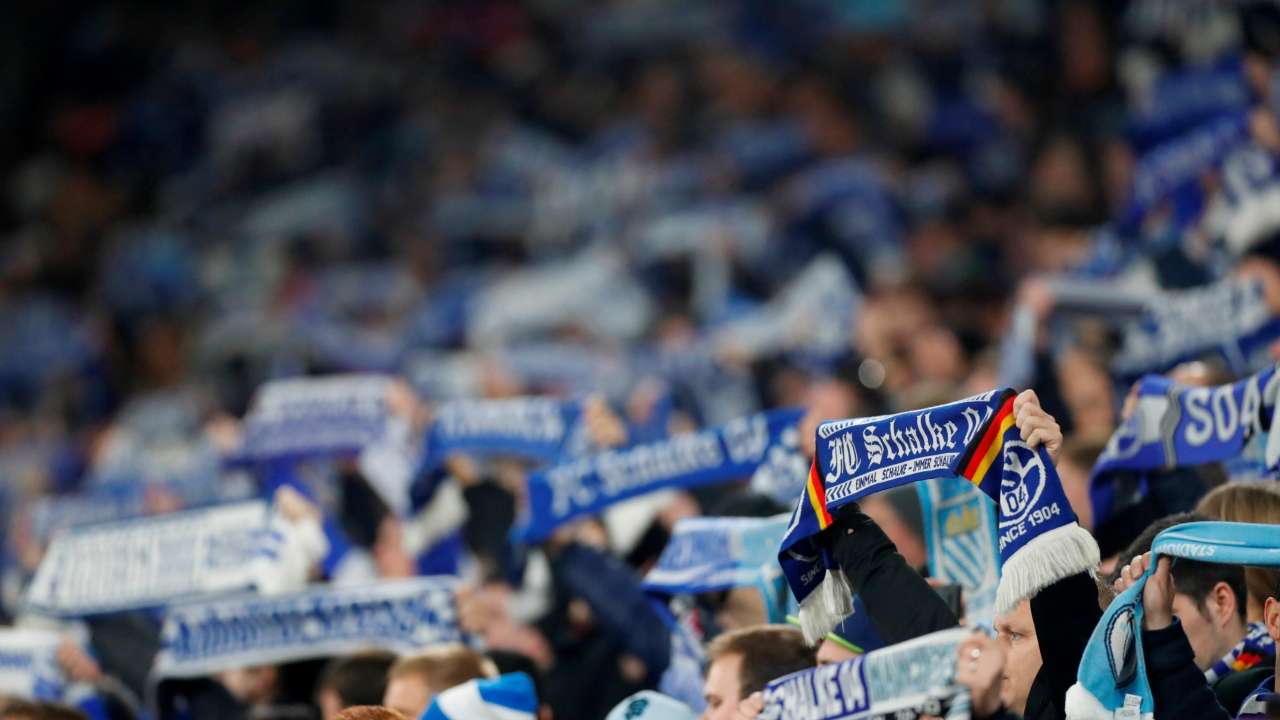 Champions League Man City Fan Injured After Being Assaulted During Match Against Schalke 04