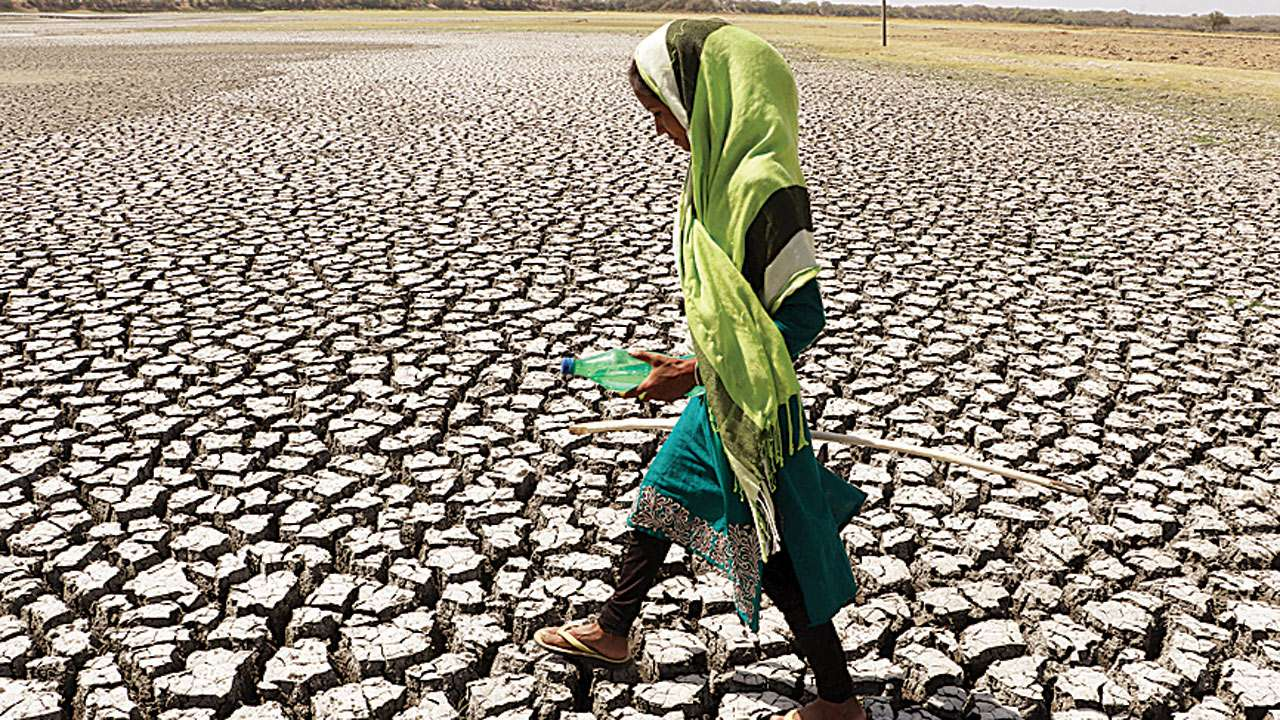 Bombay High Court asks state about the steps it proposes to take to tackle drought