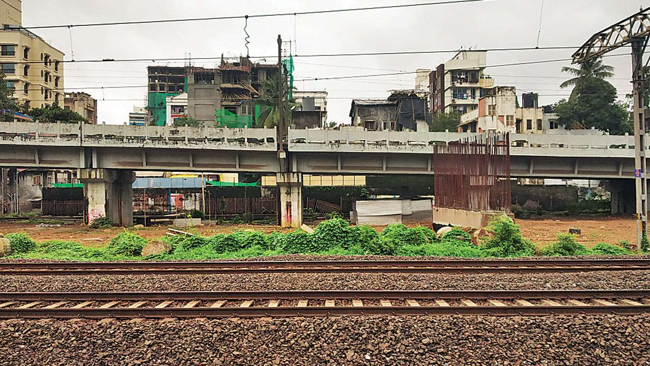 Mumbai: Western Railway calls tenders for shifting trees to make way
