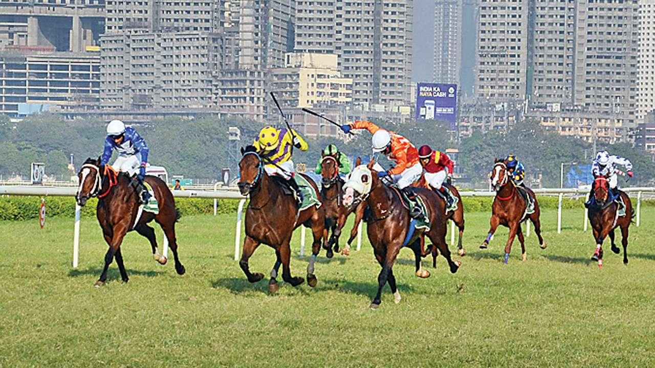 Race course delhi betting on sports binary options mt4 indicators