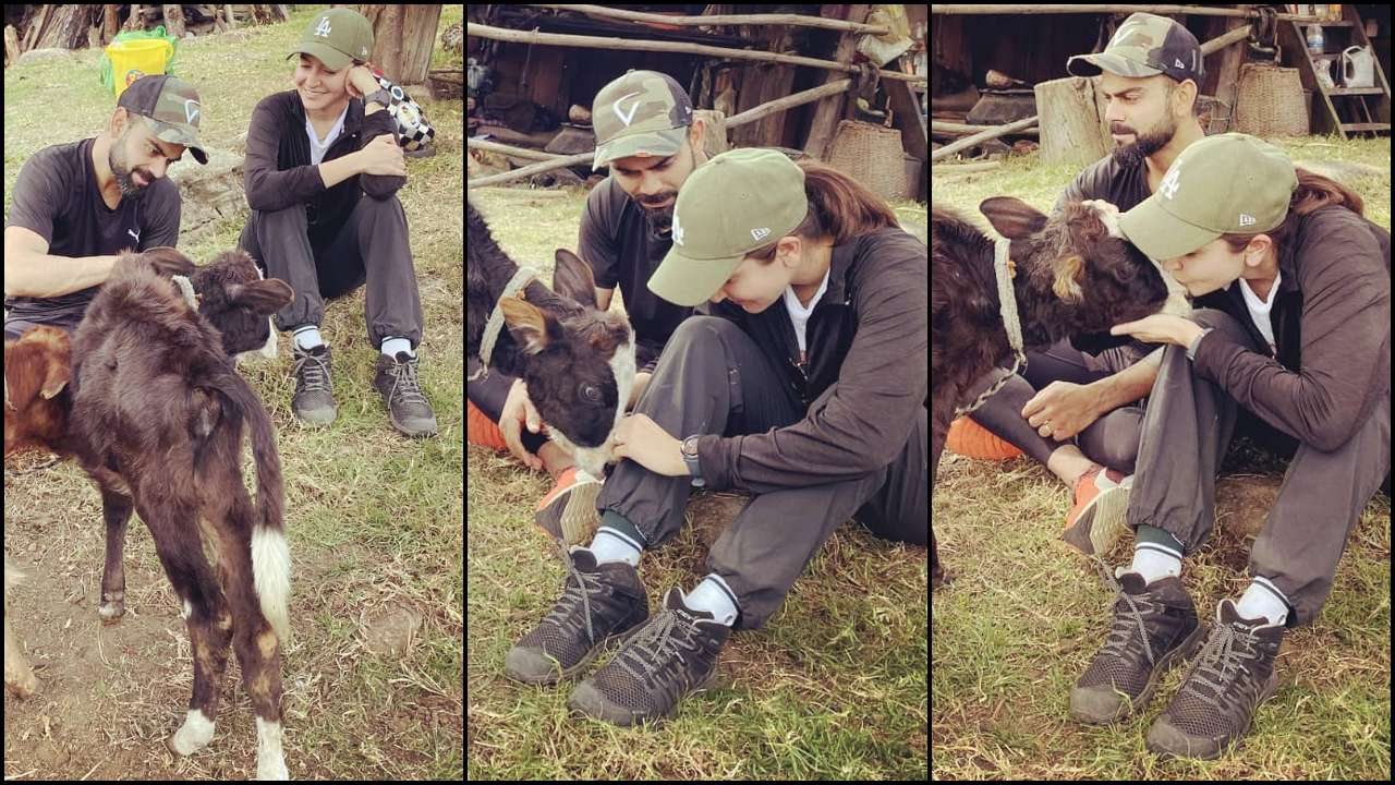 'Love recognizes love'! Virat Kohli and Anushka Sharma continue their tryst with animals while holidaying in Bhutan