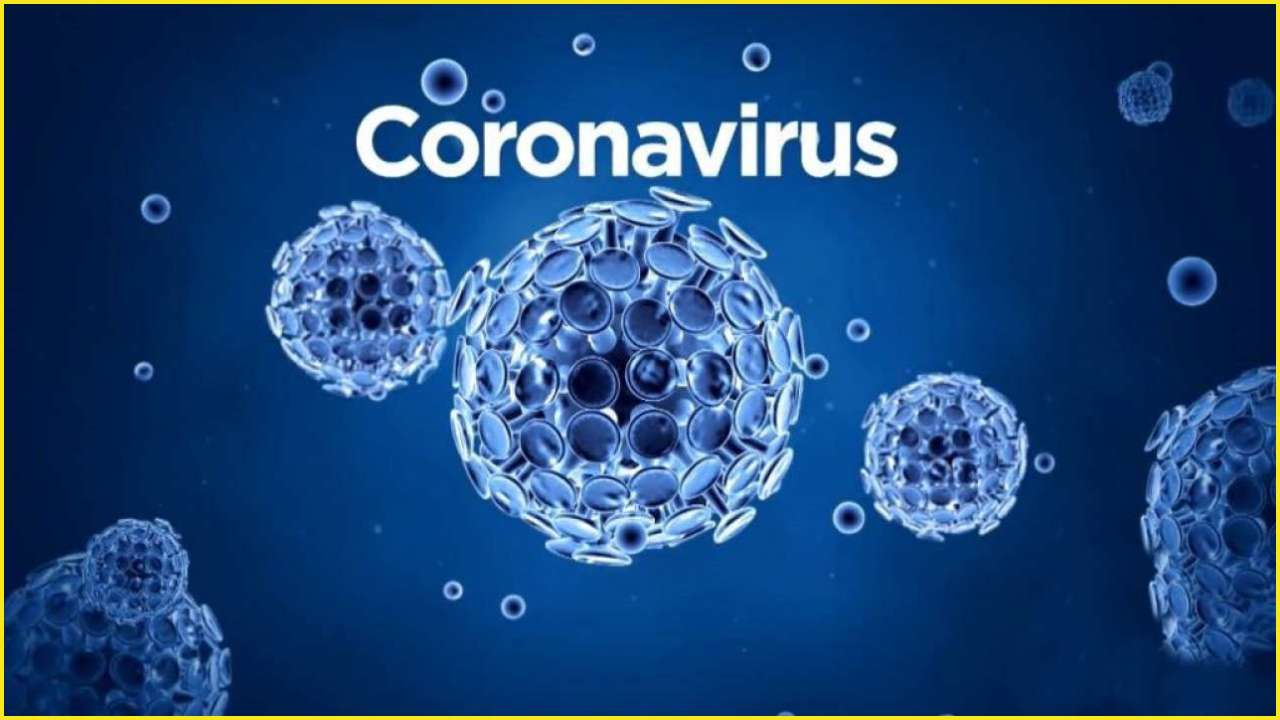 Coronavirus in India LIVE updates: 2,301 confirmed COVID-19 cases; 56 deaths