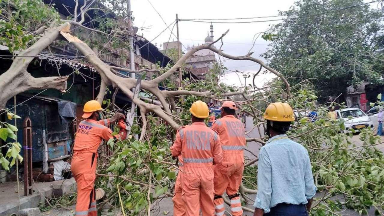 NDRF deploys 9 teams in Maharashtra as cyclone Nisarga gets closer