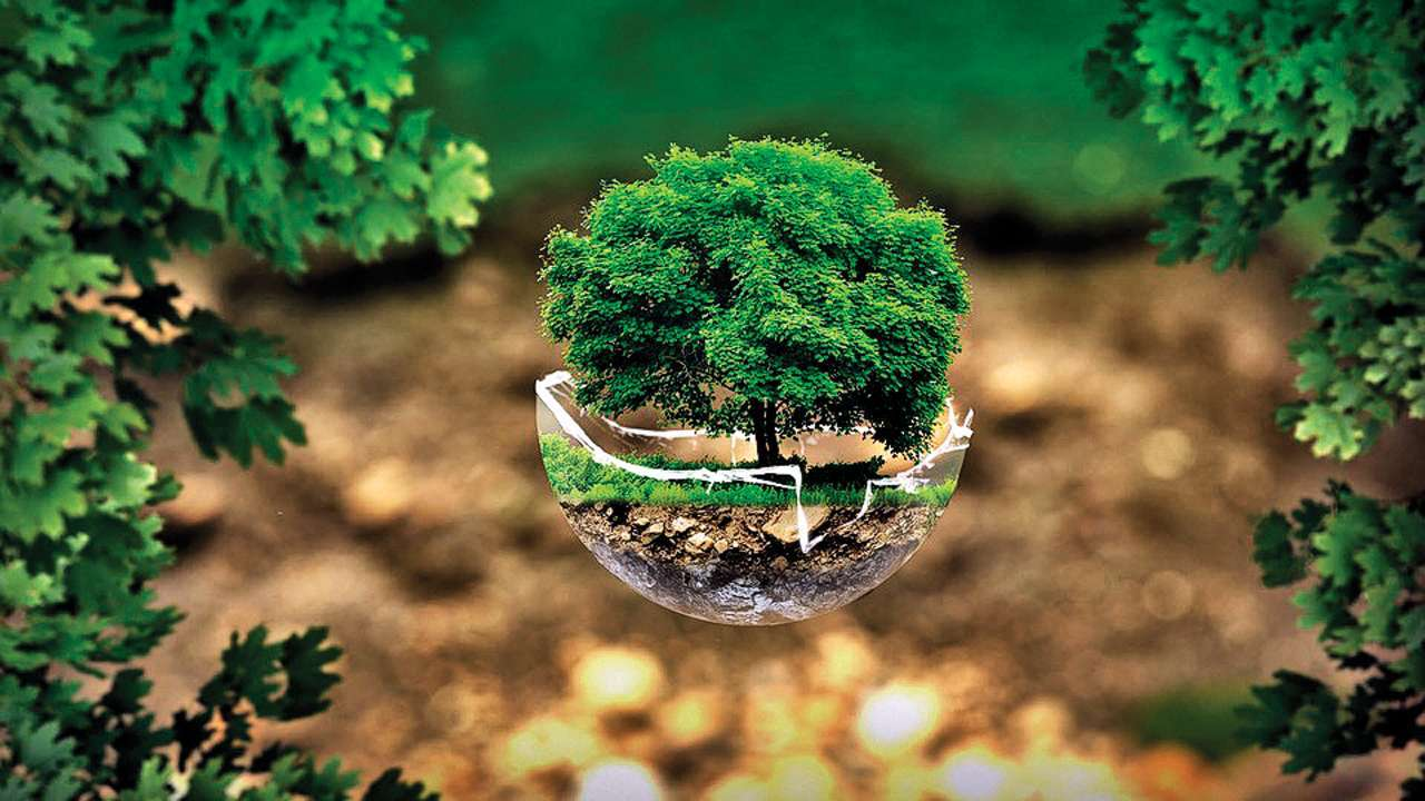 World Environment Day 2020: WhatsApp, Facebook msg, SMS, quotes to ...