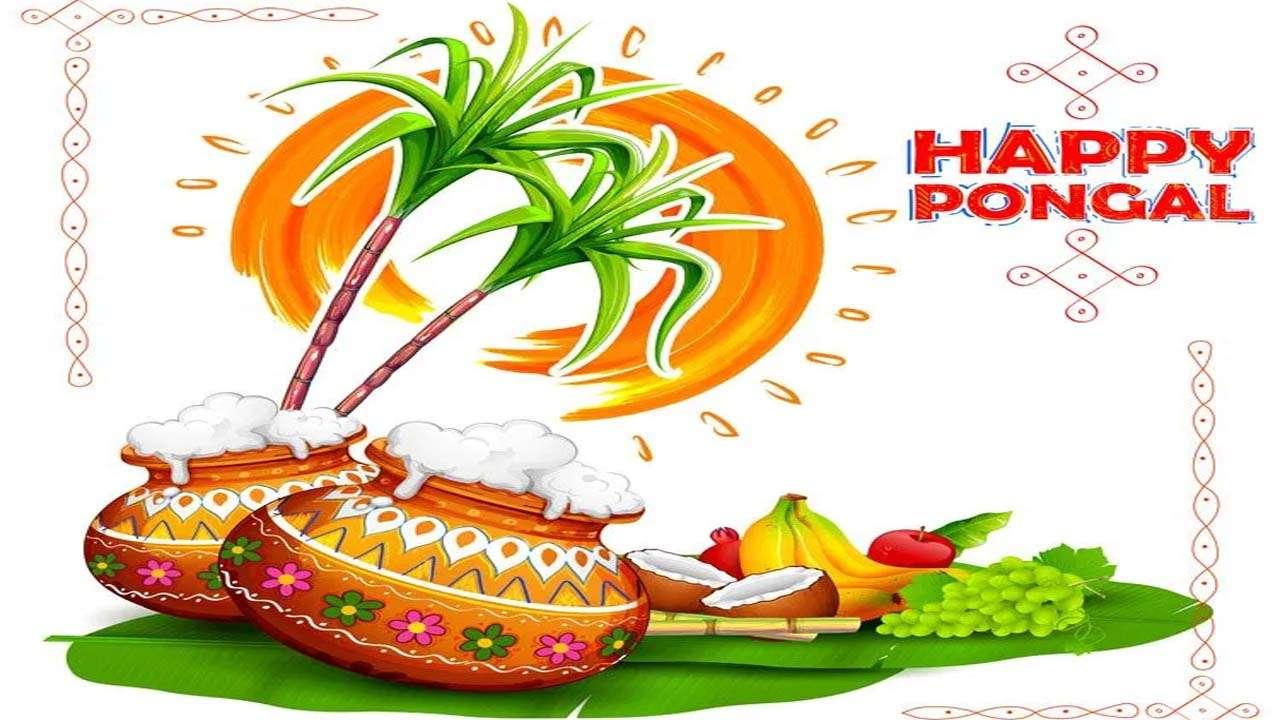 Pongal 2021: 4-day long harvest festival begins today ...