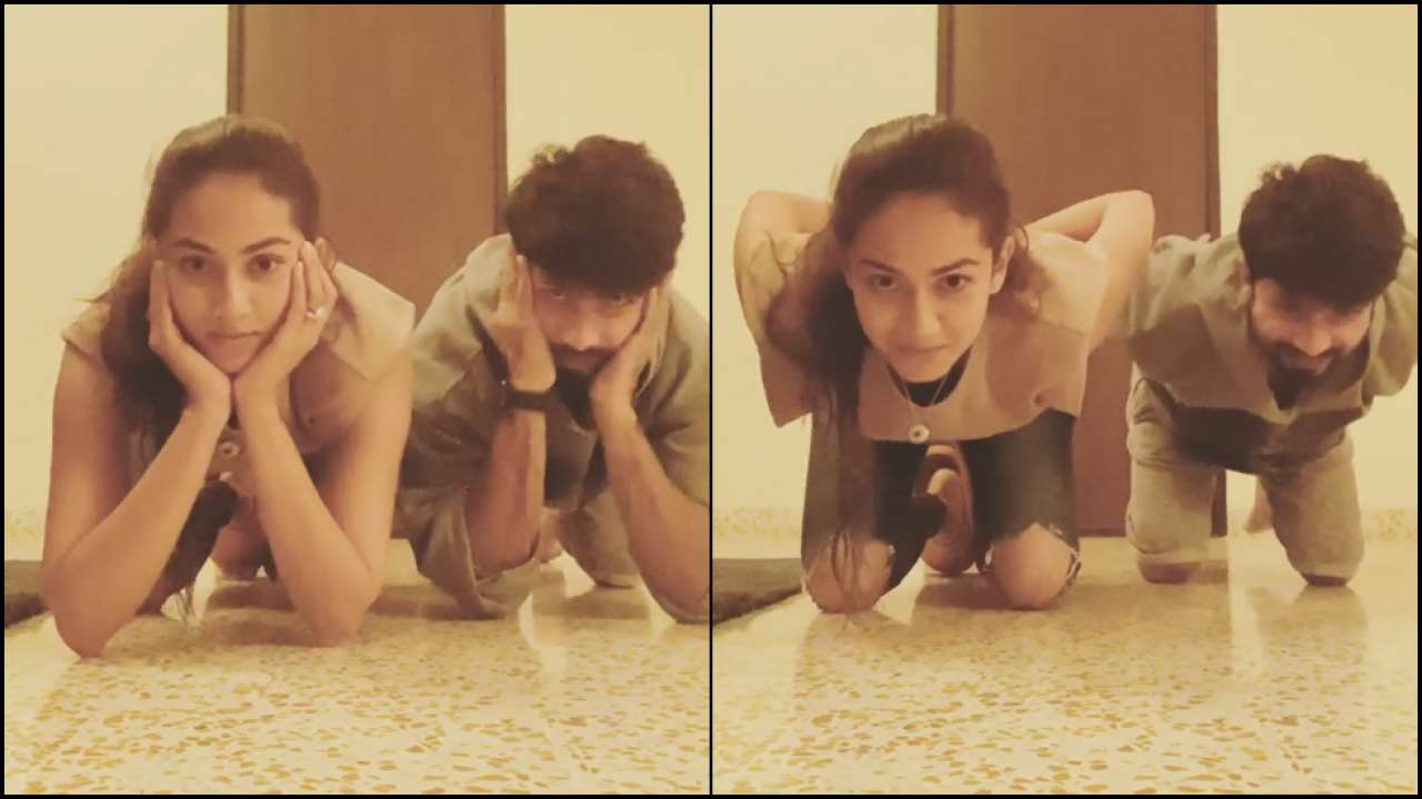 'You're a smooth operator': Shahid Kapoor nails 'Gravity Challenge' with wife Mira Rajput