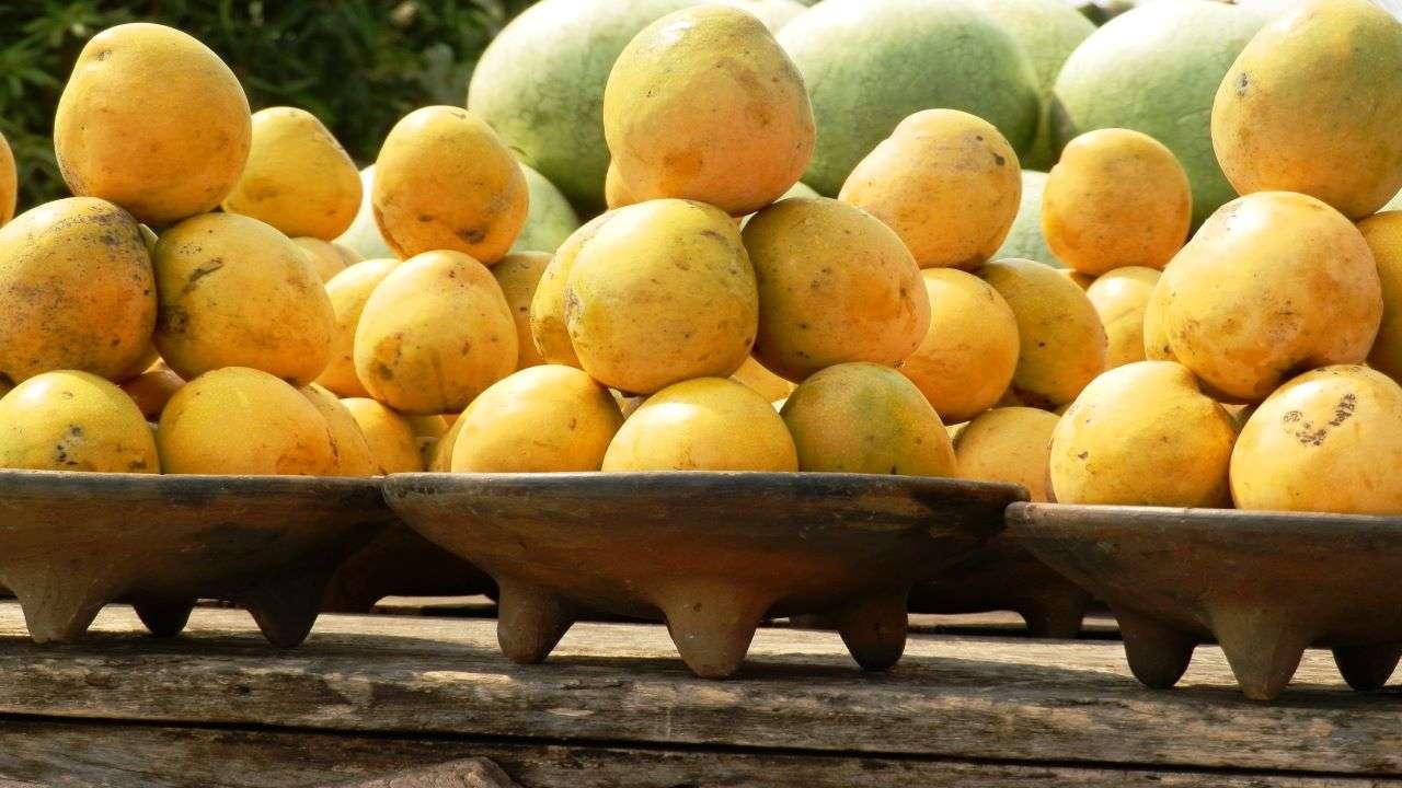 National Mango Day 2021