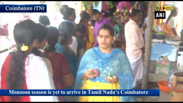 Devotees offer 'bael' fruit at 'Mahaliamman Temple' to pray for monsoon in Coimbatore