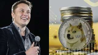 Shiba Inu falls two spots after Elon Musk's response to a tweet - Find...