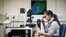 Nanoparticles may be more harmful than thought: Study