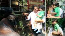 In pics: After riding a horse, Taimur Ali Khan is now having fun feeding co...