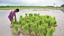 States kick off data collection for PM-Kisan