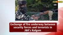 Exchange of fire underway between security forces and terrorists in Kulgam