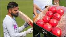 Virat Kohli and Co get taste of pink cherry during India's practi...