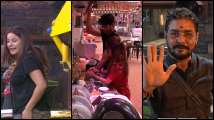 'Bigg Boss 13' Episode 46 Preview: Hindustani Bhau picks on Mahir...