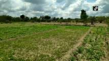 Farmers in Moradabad heap praise on agriculture reform bills