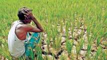 These farmers will not get Rs 2,000 under 9th installment of PM-KISAN...