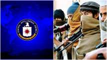 Al Qaeda getting stronger after Taliban takeover in Afghanistan? - Wha...
