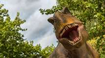 Jurassic Park alert: Scientists hope to clone dinosaurs with DNA from...