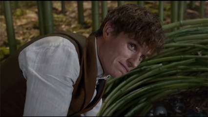 Newt Scamander Latest News Videos And Photos On Newt Scamander Dna News