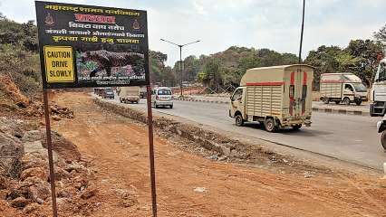 Ghodbunder Road: Latest News, Videos and Photos on