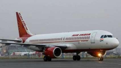 Delhi-bound Air India flight hits bird during take off, returns to Raipur