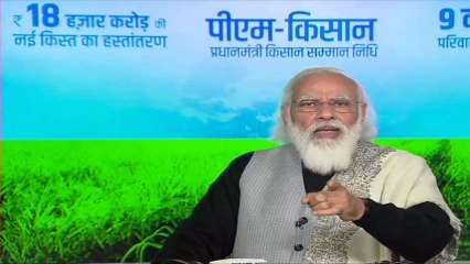PM Kisan: Check step-by-step guide to apply for Kisan Credit Cards through SBI